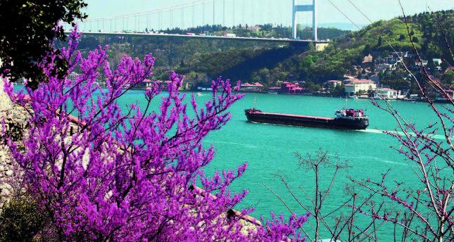 Istanbuls Purple Grace Daily Sabah