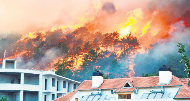 Forest fire guts 5 hotels in Antalya