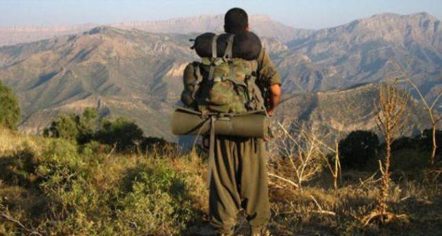 Two senior PKK members arrested