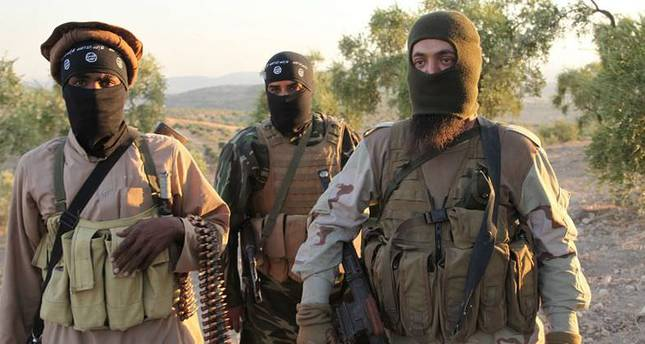Four Australian brothers believed to join ISIS in Syria, family devastated