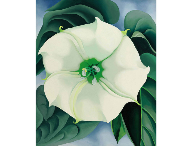 Georgia O'Keeffe's flower painting sells for a record $44.4 mn