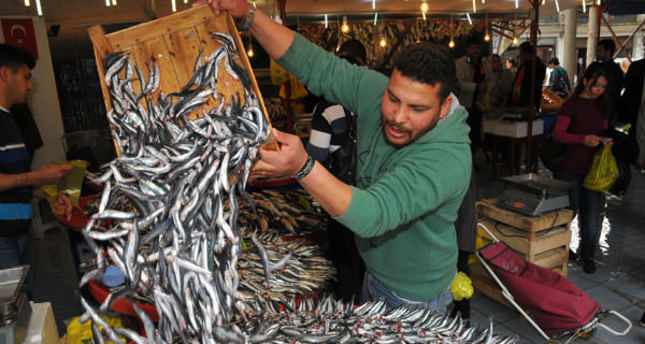 EU Commission stamps higher tax on Turkish fish