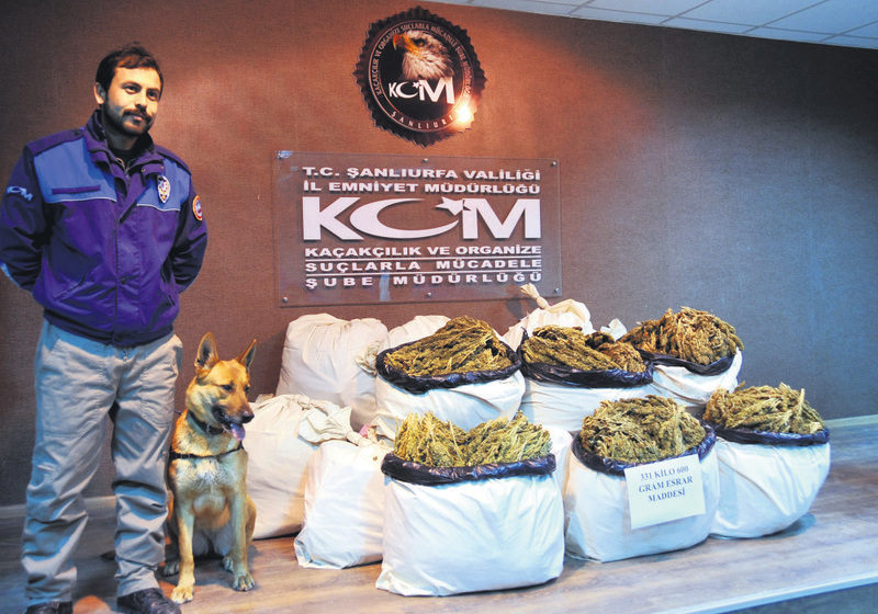 A counter-narcotics police officer and a K-9 unit pose with 330 kilos of cannabis seized in the city of u015eanlu0131urfa in February.