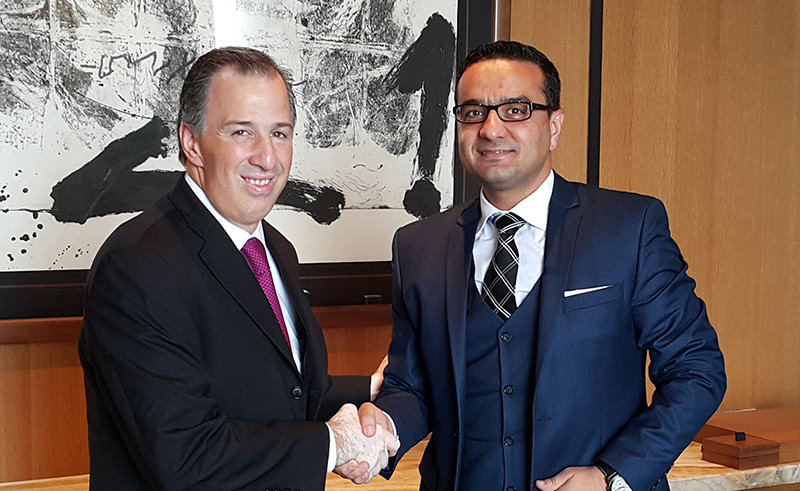 Mexican Foreign Affairs Minister Jose Antonio Meade Kuribrena (L) with Daily Sabah Ankara Bureau Chief Ali u00dcnal (R)