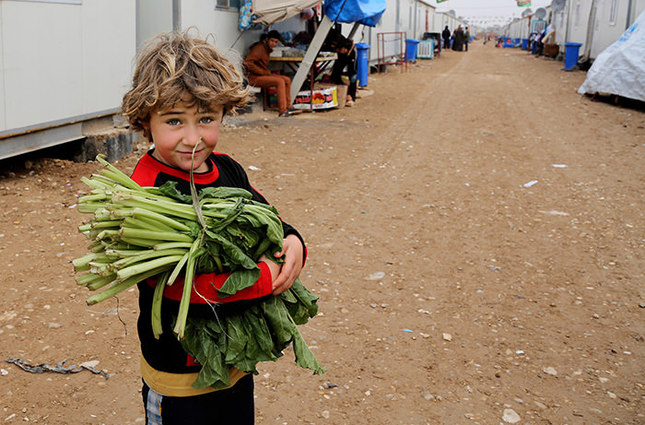 5-year-old Yusuf Abdul Karim brings vegetables to his family at the Nabi Younis refugee camp in Baghdad's southeast suburb of Nahrawan, Iraq (AP Photo)