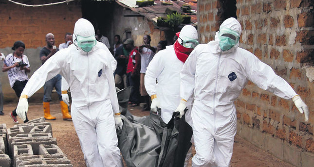 the ebola virus and its outbreaks biology essay Viral bioterrorism: learning the lesson of ebola virus in  characteristics of ebola virus, its potential as  reported in all outbreaks since ebola virus.