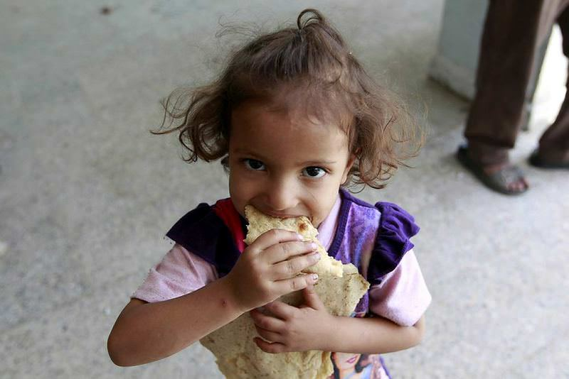A displaced Yemeni child who fled Saada province with her family due to clashes eats bread as the U.N. warns of developing famine.