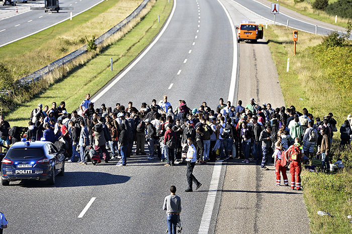 A group of refugees and migrants who were walking north stand on the highway in southern Denmark on Wednesday (AP Photo)
