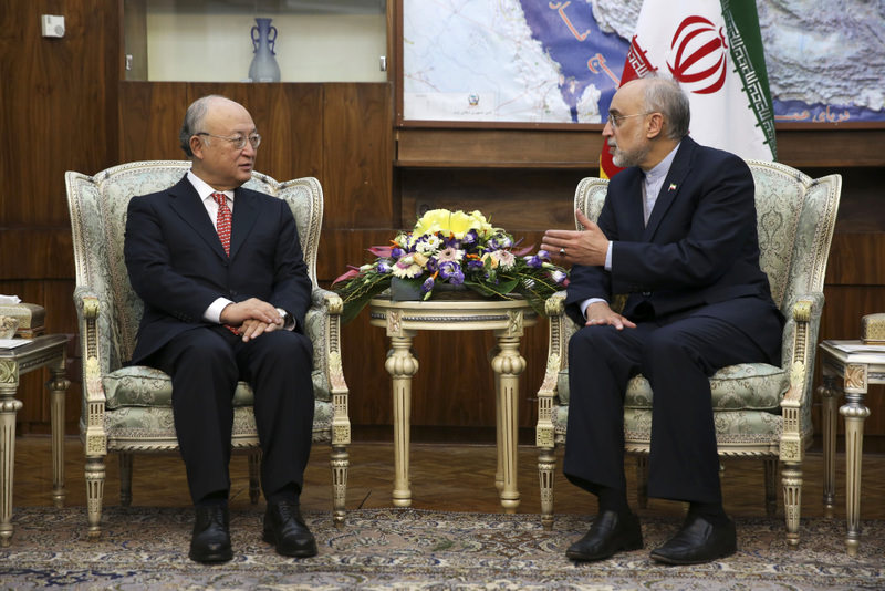 Director General of the International Atomic Energy Agency (IAEA) Yukiya Amano  (L) talks with the head of Iran's Atomic Energy Organization Ali Akbar Salehi, right, talks with in a meeting in Tehran, Iran.