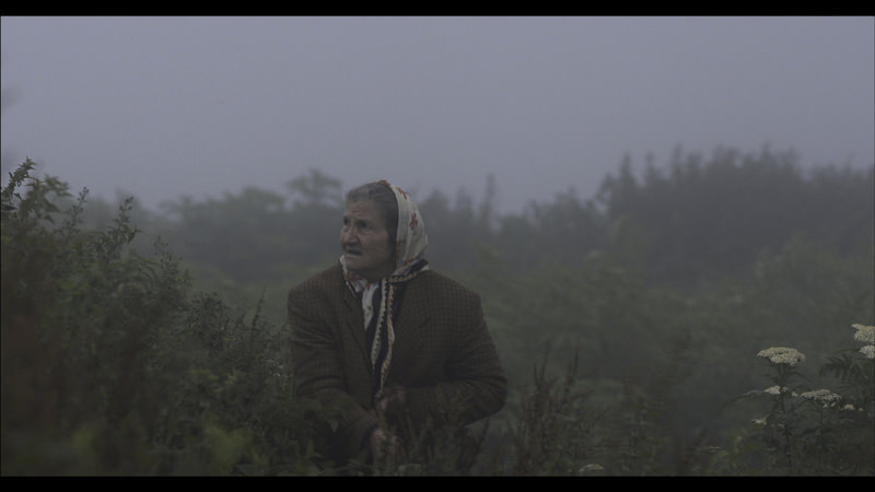 Reality and dreams mingle in the film as Kara tries to enlighten a mysterious and poetical relation by delving into the depths of humankind and nature. He sometimes touches upon loneliness in nature and the harsh feeling of poverty.