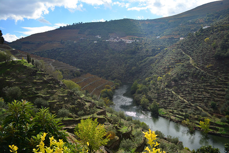 Douro Valley (Mehmet Çelik/Daily Sabah Photo)