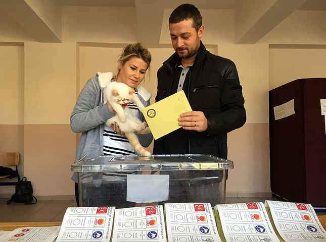 Damla and Hakan İncioğlu couple brought their cat Köpük (Bubble) to the polling station in western province of Edirne. (AA Photo)