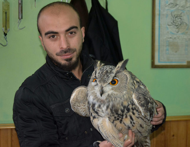 Giant owl with 2.5-meter wingspan draws interest in central Turkey