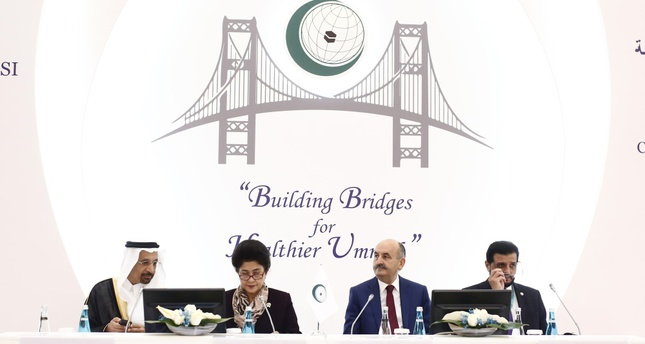 Muslim countries' ministers meet in Istanbul for 'healthier ummah'