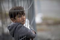 A migrant child looks through a fence at the Slovenian-Austrian border in Spielfeld, Austrıa, 27 October 2015. (EPA Photo)