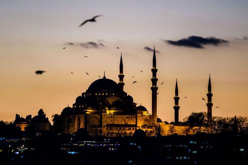 Seagulls flying over Su00fcleymaniye mosque in Istanbul