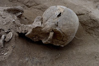 Detail of the skull of the skeleton of a man found lying prone in the sediments of a lagoon 30km west of Lake Turkana, Kenya, January 20, 2016. (REUTERS Photo)