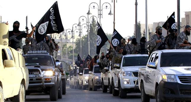 Belgium largest source of foreign fighters in Syria per head, study reveals