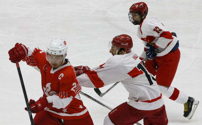 Turkey eyes world title in men's ice hockey