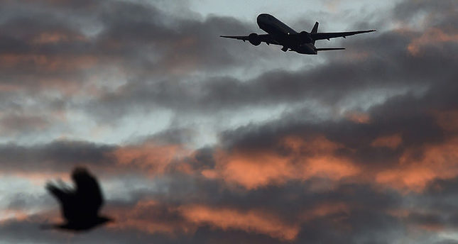 A bird passes in the foreground as a passenger aircraft makes it's final landing approach towards Heathrow Airport at dawn in west London Britain, April 18, 2016 (Reuters Photo)