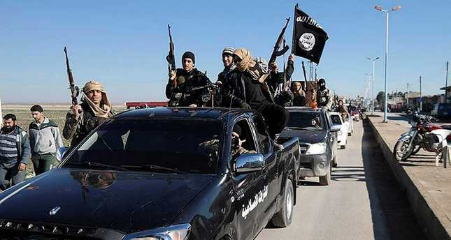 DAESH militants pass a convoy in Tel Abyad, northeast Syria.