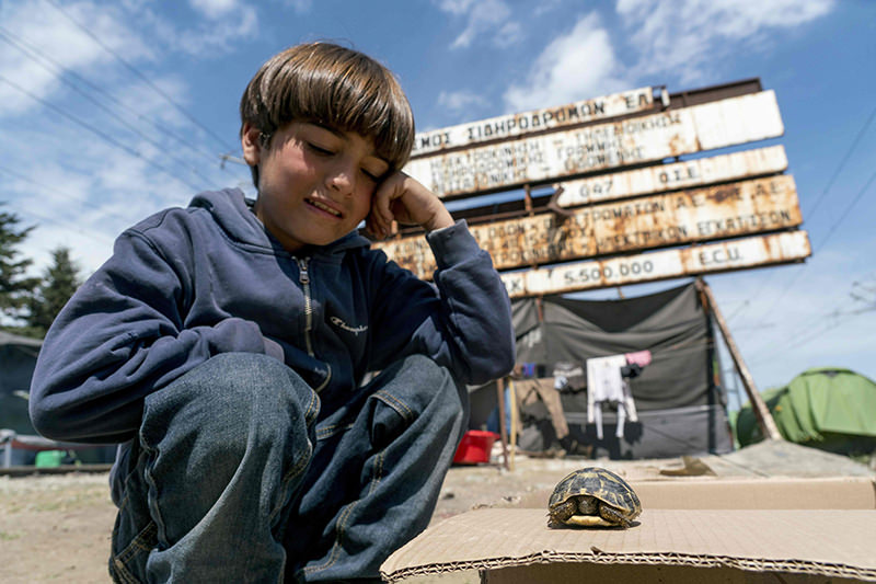 A child refugee plays with a tortoise at a makeshift camp for migrants and refugees at the Greek-Macedonian border near the village of Idomeni on April 23, 2016. (AFP Photo)