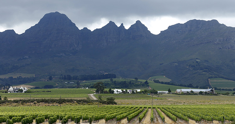 Vineyards sit beneath hills at a farm near Stellenbosch, in the country's wine producing region, South Africa, November 13, 2015 (Reuters Photo)