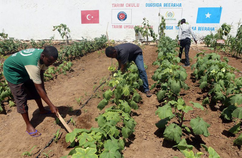 An agricultural training project in Somalia by Tu0130KA helps locals establish sustainable agriculture in the face of drought.