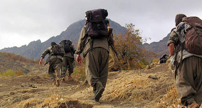 تركيا.. مقتل 31 من عناصر تنظيم بي كا كا الإرهابي خلال 24
