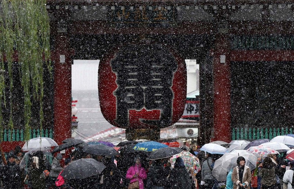 Tourists visit the Kaminarimon gate during the first November snowfall in 54 years in Tokyo, at Senso-ji Temple in Tokyo's Asakusa district, Japan, Nov. 24, 2016. (REUTERS Photo)