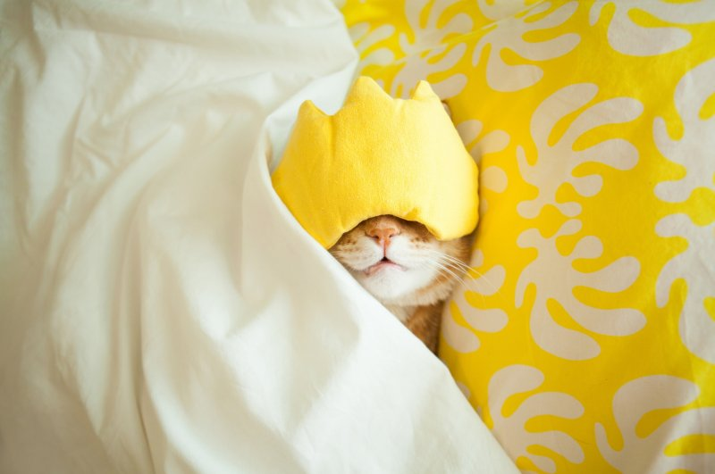 Napping for 30 minutes or longer increases your risk of falling into the deep stages of sleep. (Anna Rise / iStock)