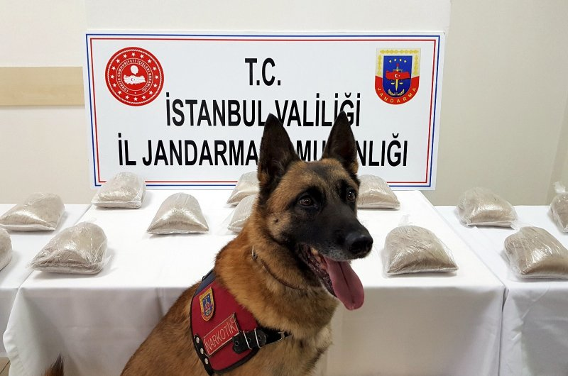 This file photo dated March 03, 2019 shows sniffer dog Atak posing in front of heroin displayed upon seizure in a police raid, at the Provincial Gendarmerie Command in Istanbul. (Photo: Sabah / Mustafa Kaya)