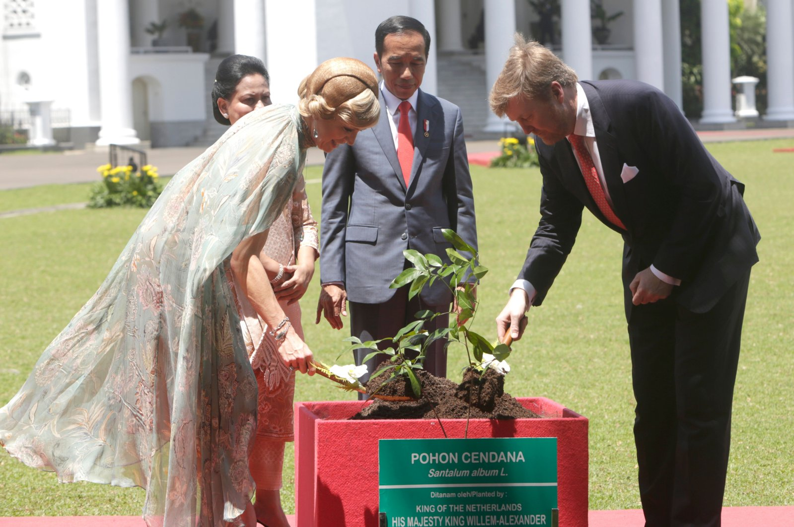 Dutch King Willem-Alexander (R) and Queen Maxima (L) accompanied by Indonesian President Joko Widodo (2nd R) and wife Iriana Joko Widodo (2nd L) plant a tree during their visit to the Presidential Palace in Bogor on March 10, 2020. (AFP Photo)