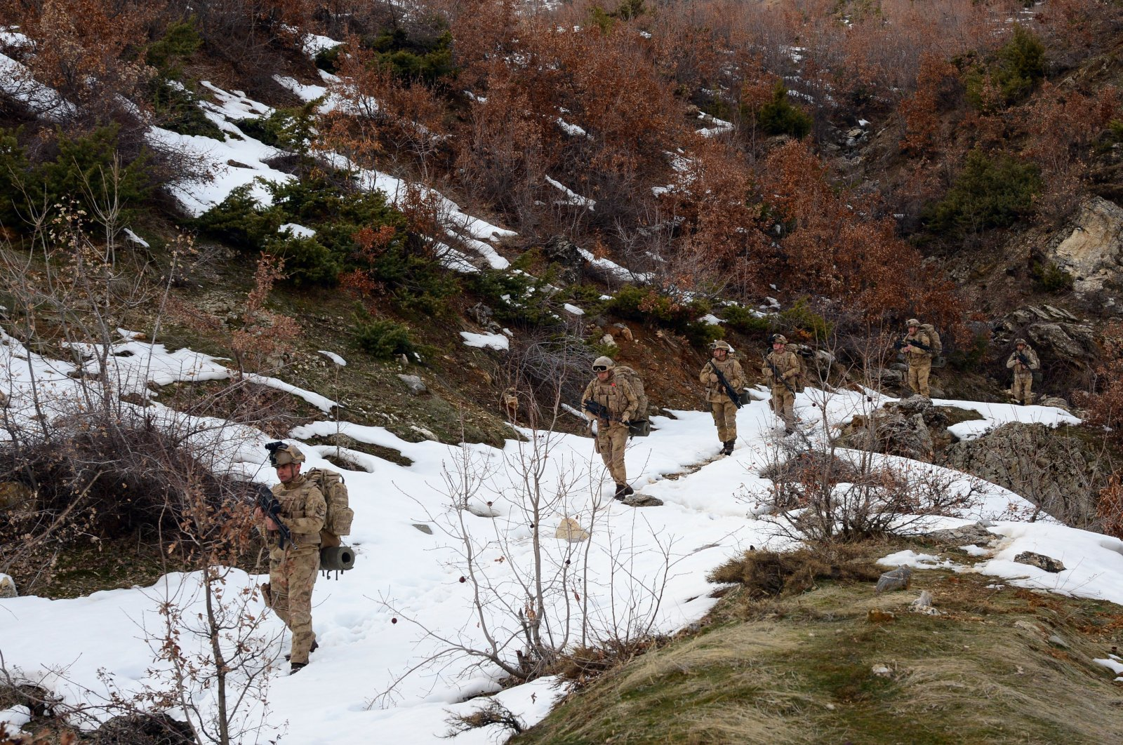Bitlis provincial gendarmerie forces participate in anti-terror operation (AA Photo)