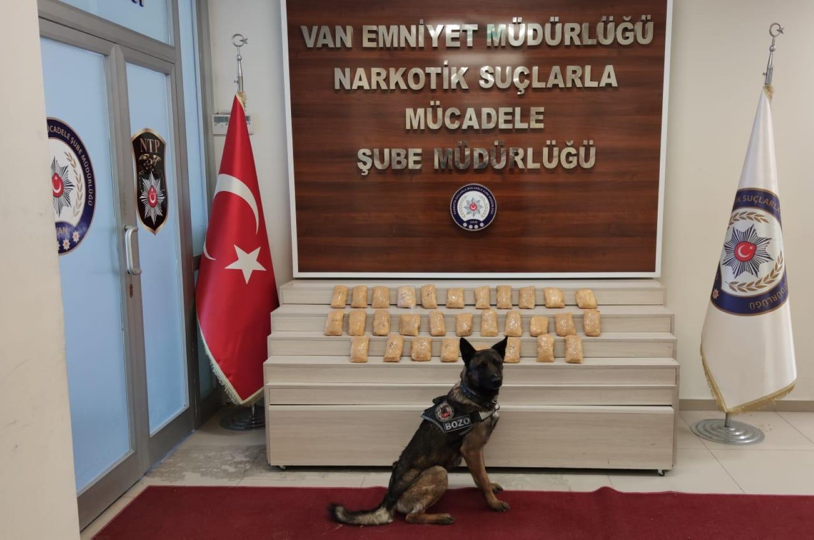 A sniffer dog poses in front of captured drugs, Friday, March 20, 2020, in Van. (AA Photo)