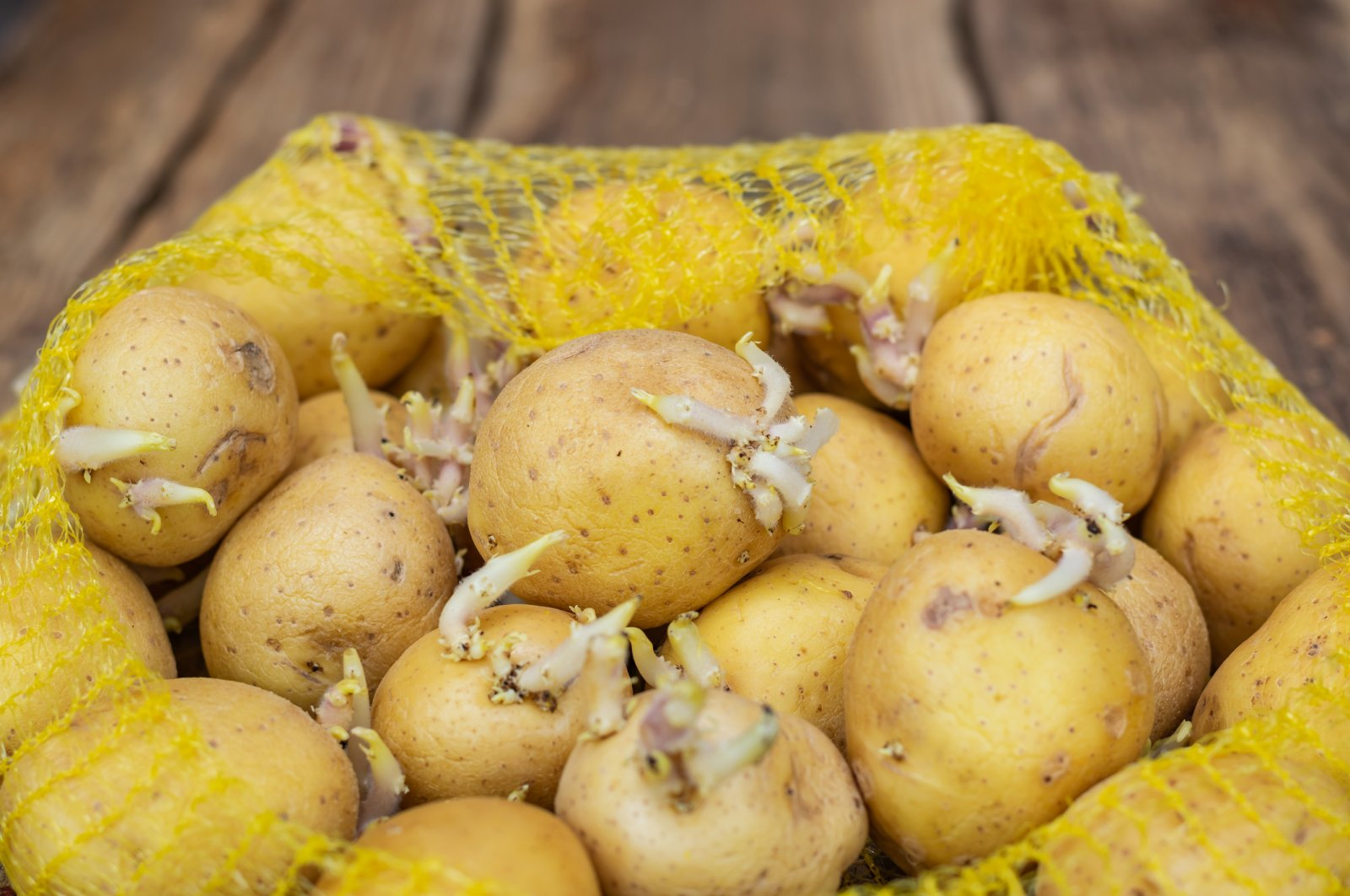 If you have some potatoes that are beginning to sprout, simply plant a piece in the ground or in a roomy pot. (iStock Photo)
