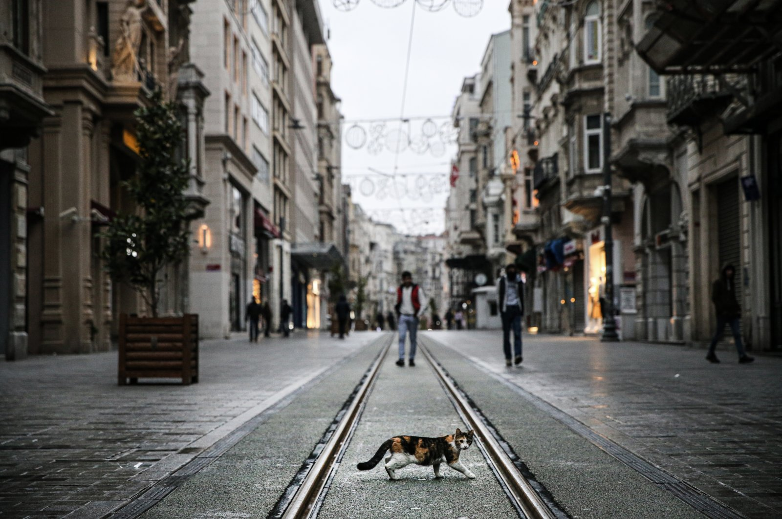 Istanbul's famous Istiklal Avenue, which is usually bustling with people, has been nearly deserted recently. (AA Photo)