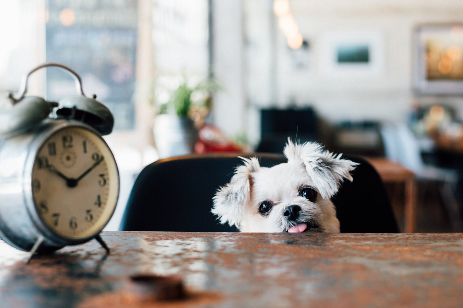 Over time, daylight saving time messes with our body clock and can trigger cardiac problems. (iStock Photo)
