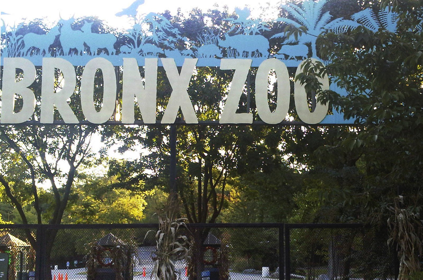 This Sept. 21, 2012, file photo shows an entrance to the Bronx Zoo in New York, U.S. A tiger at the zoo has tested positive for the new coronavirus. (AP Photo)