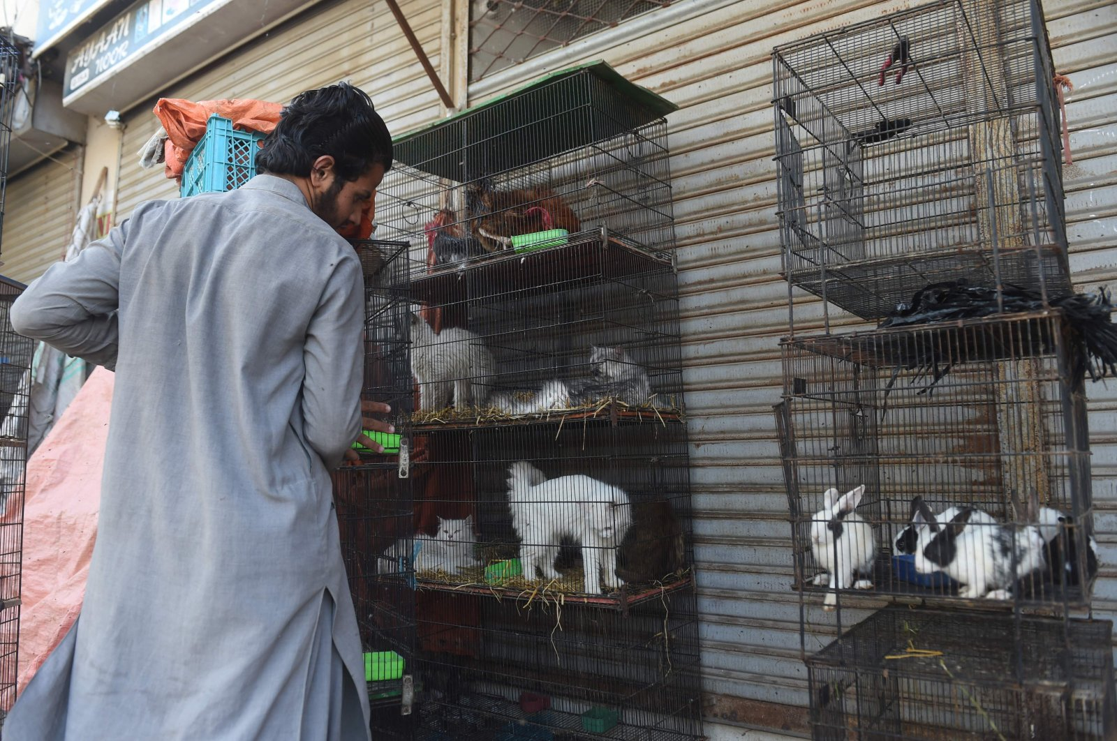 A vendor moves the cages of animals outside his closed shop during a government-imposed nationwide lockdown as a preventive measure against the coronavirus, Karachi, Pakistan, Wednesday, April 1, 2020. (AFP Photo)