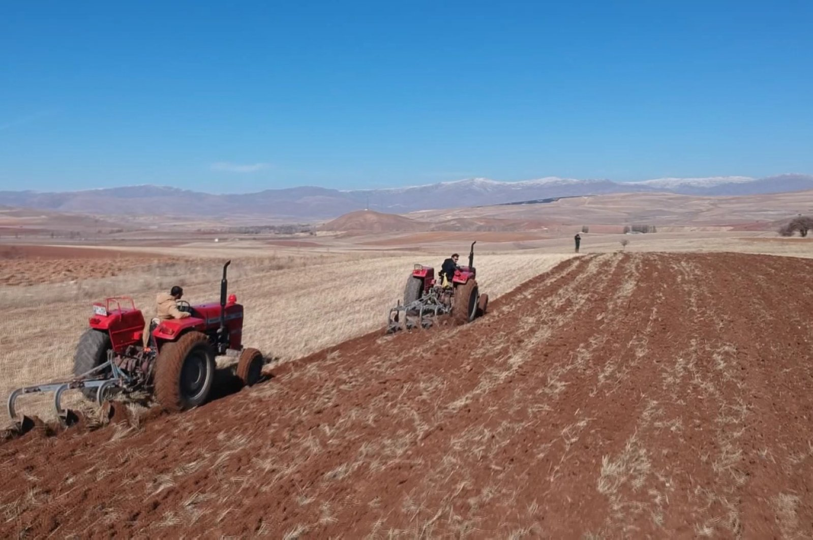 Farmers are seen working at a plantation in Turkey's northeastern Bayburt province, Saturday, April 4, 2020. (DHA Photo)