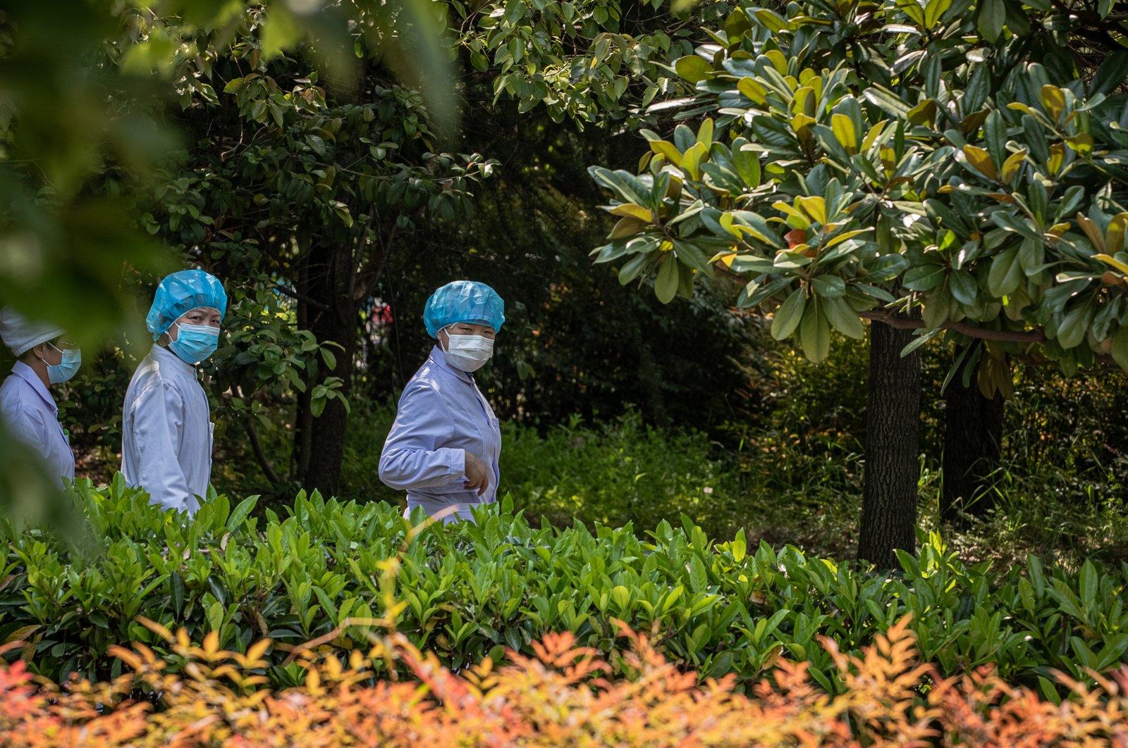 Medical workers walk outside Jinyintan Hospital, in Wuhan, China, April 9, 2020. (EPA Photo)
