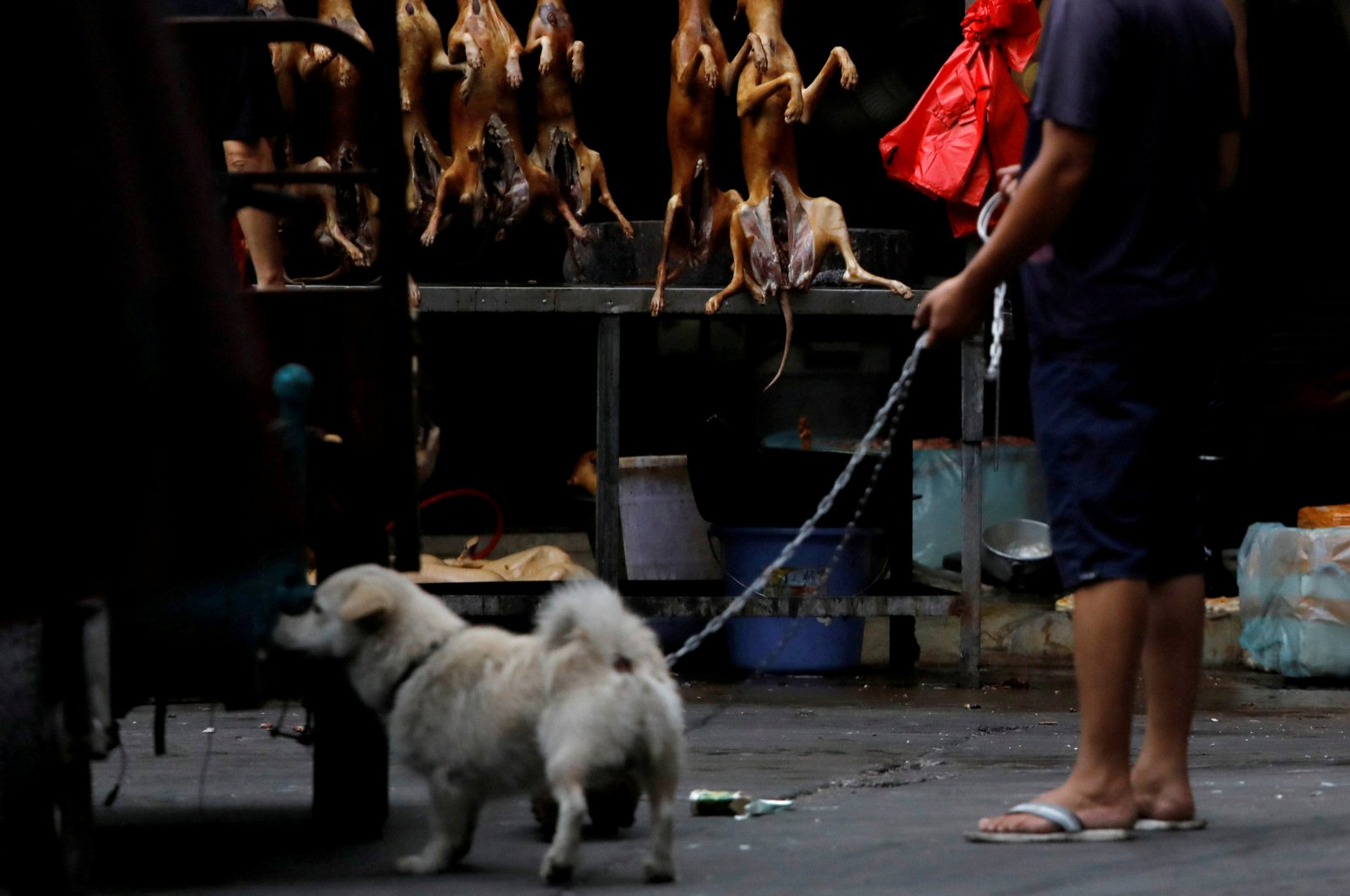 A man walks with his pet dog as he talks to a vendor who sells dog meat at a market in Yulin, Guangxi Autonomous Region, China, June 21, 2018. (Reuters Photo)