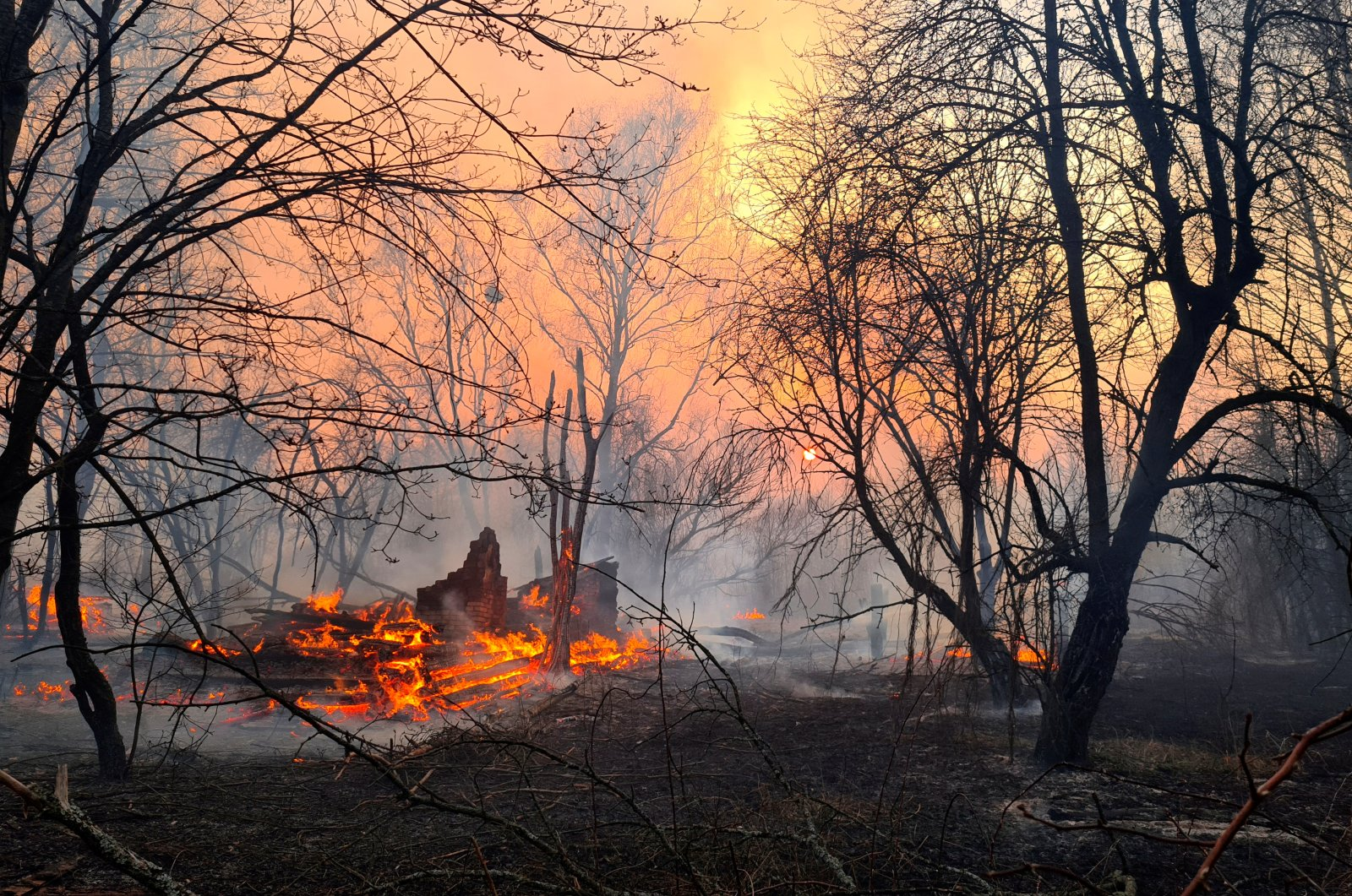 A fire burns in the exclusion zone around the Chernobyl nuclear power plant, outside the village of Rahivka, April 5, 2020. (REUTERS Photo)