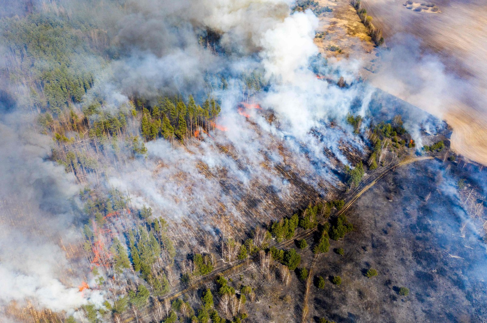 This aerial picture taken on April 12, 2020 shows a forest fire burning at a 30-kilometer (19-mile) Chernobyl exclusion zone in Ukraine, not far from the nuclear power plant. (AFP Photo)