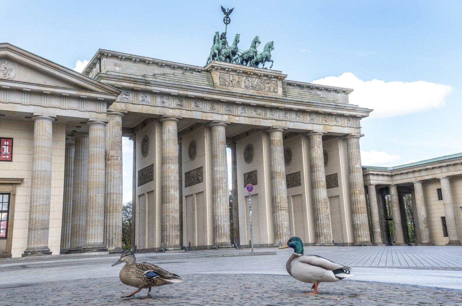 A pair of mallard ducks wanders in front of the Brandenburg Gate at Pariser Platz in Berlin, Germany, April 14, 2020. (EPA Photo)