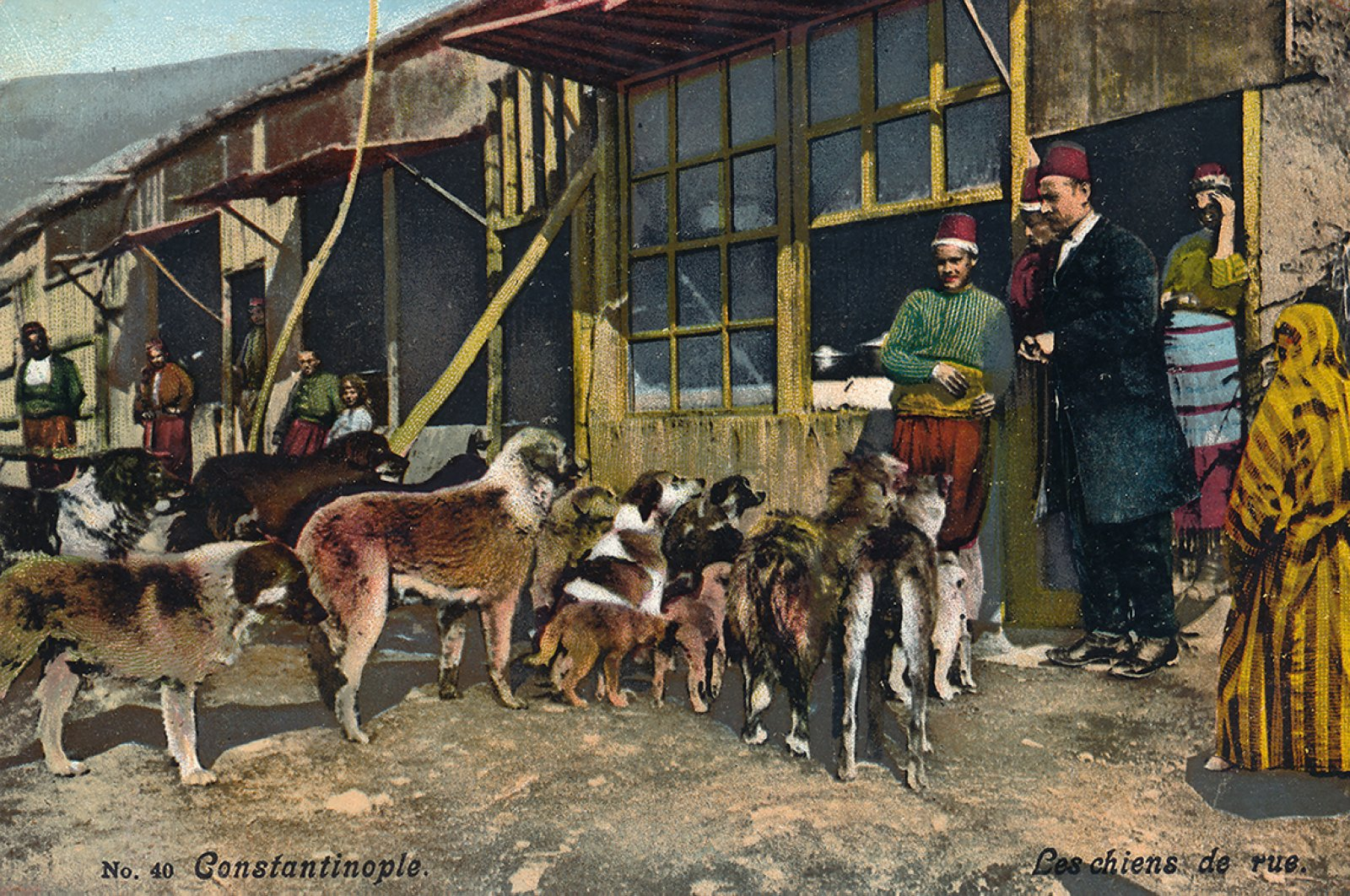 The exhibition traces the history of street dogs through photographs, travel journals, postcards, magazines and engravings. (Photos Courtesy of Istanbul Research Institute)
