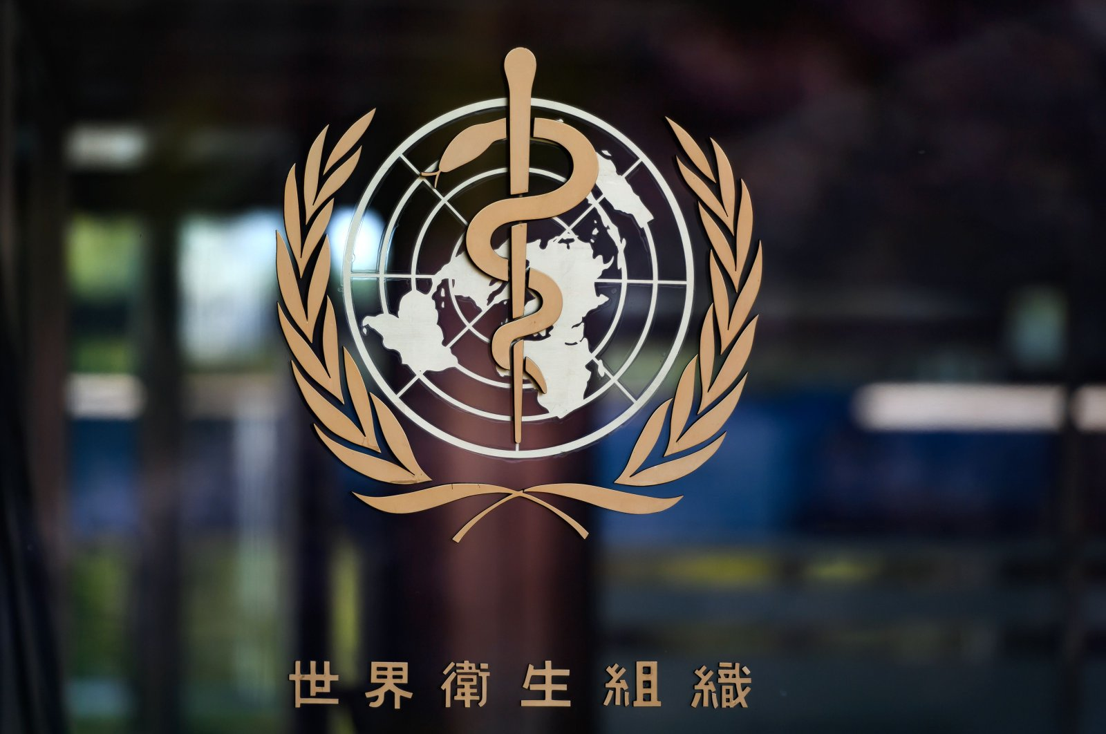 The logo of the World Health Organization (WHO) written in Chinese on the entrance of their headquarters in Geneva amid the COVID-19 outbreak, April 15, 2020. (AFP Photo)