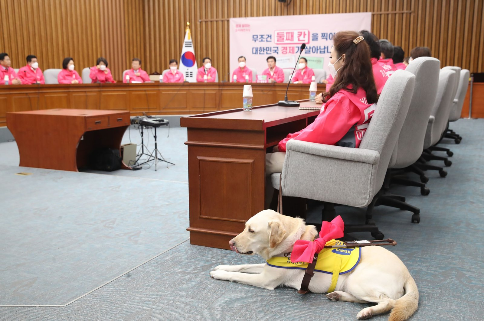 This picture taken on April 13, 2020 shows Kim Ye-ji (front R) of South Korea's minor opposition Future Korea Party and her guide dog Joy attending a party meeting ahead of the parliamentary elections at the National Assembly in Seoul. (AFP/YONHAP Photo)