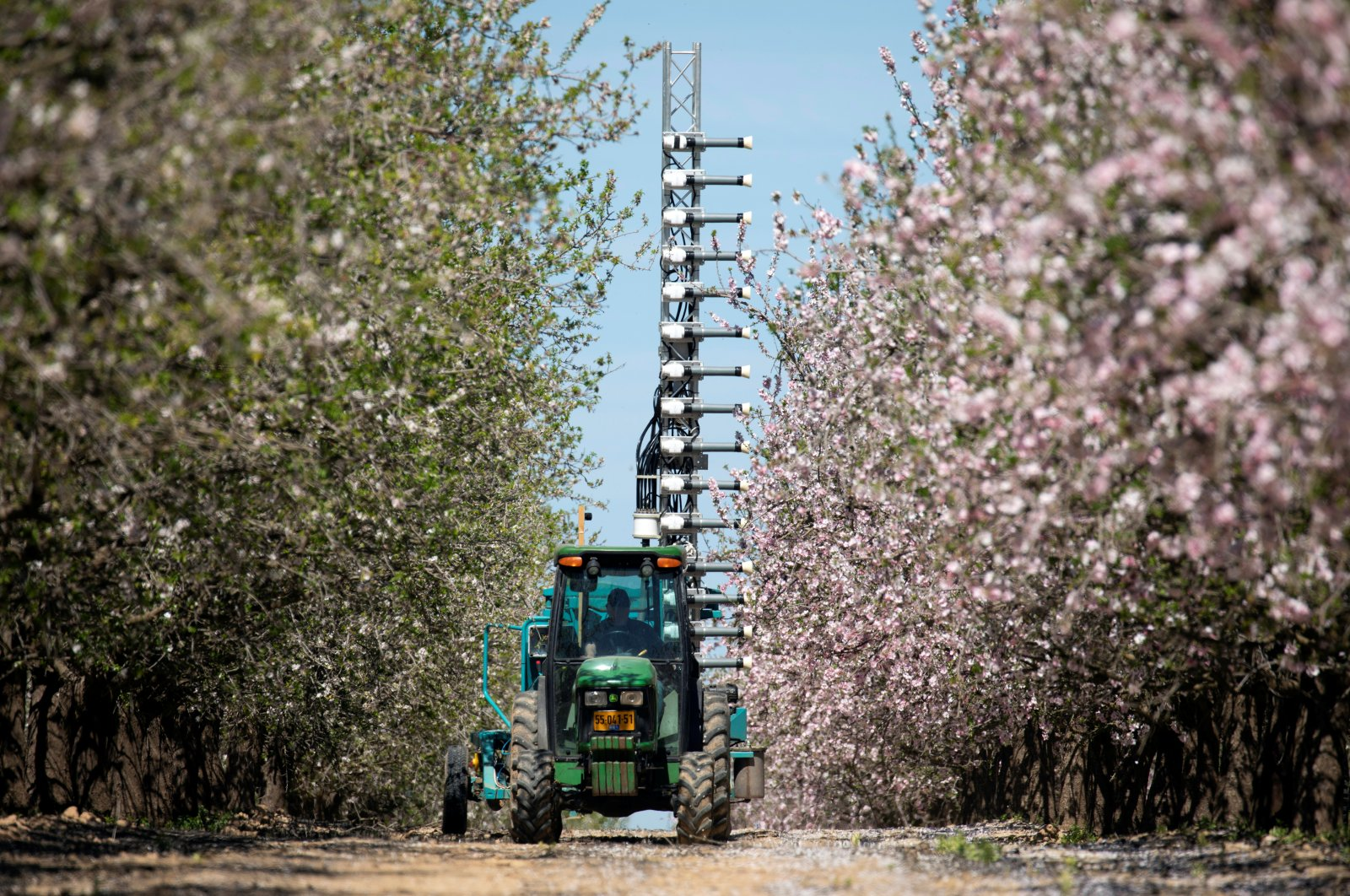 A tractor pulls a mast equipped with small cannons that shoot pollen at almond trees, allowing them to be fertilized without bees, Tel Arad, southern Israel, March 4, 2020. (Reuters Photo)